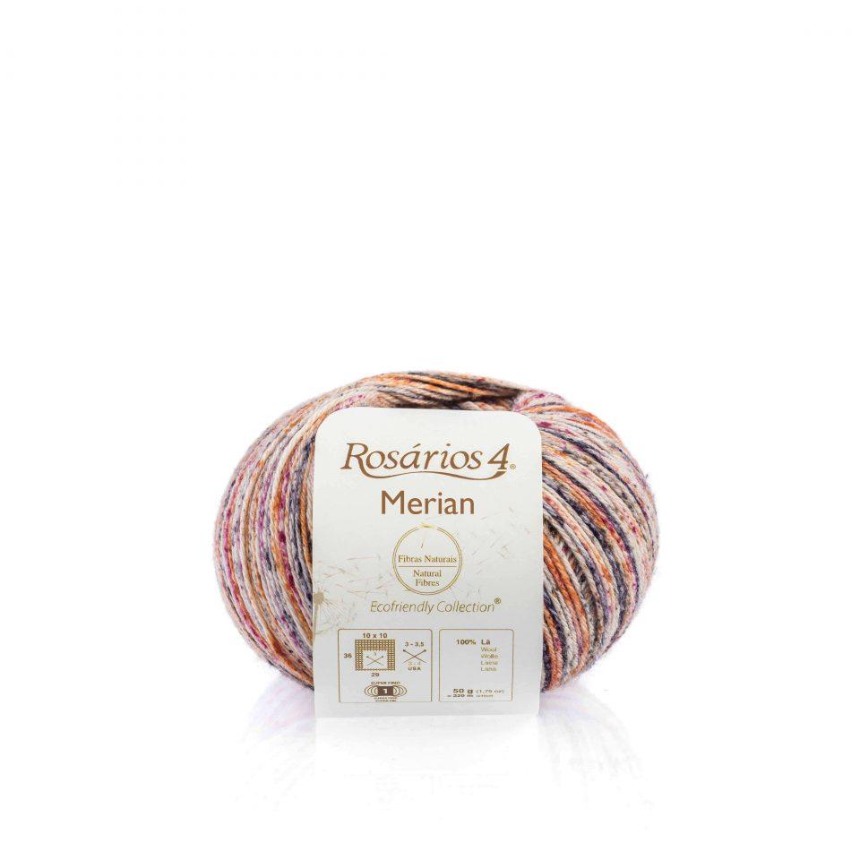 Merian-3249 (1)